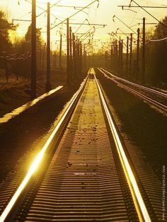 The Train to Yellowland by Giedrius Grigonis on 500px
