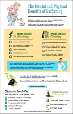 The Mental and Physical Benefits of Gardening goldcoastchiropractor.com