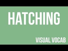 Hatching defined - From Goodbye-Art Academy - YouTube