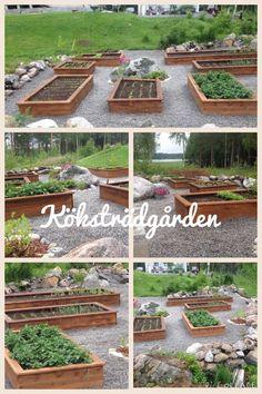 Odlingslådor, köksträdgården (raised beds)