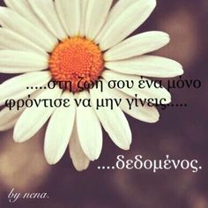 Greek quotes Epic Quotes, Advice Quotes, Old Quotes, Greek Quotes, Wisdom Quotes, Life Quotes, Unique Quotes, Wise Words, Life Is Good