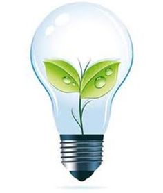 Green Light with a hint of Blue · What Is ...  sc 1 st  Pinterest & Please Donu0027t cut the Trees..They also live their lives... http ... azcodes.com