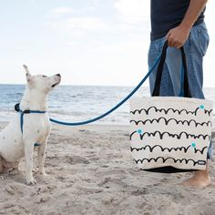 """Tote features durable, ballistic nylon base, reinforced seams on the corners, a stylized name patch, nylon-lined treat pocket, and built-in poop bag holder. Colors Dog People Get It   Dalmatian Dog   Bounce Size 17.5"""" L x 14"""" H x 6"""" W COLLECTION Gifts for Dog People: For the people who wear their heart at the end of a leash. Dalmatian Dogs, Dog Shampoo, Dog Park, Dog Gifts, Dog Bed, Best Dogs, Fur Babies, Things That Bounce, Dog Lovers"""
