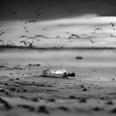 Message In A Bottle Message In A Bottle, Black And White Pictures, Solitude, Black And White Photography, Vivid Colors, Messages, World, Digital, Artist