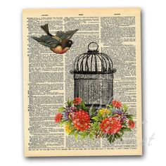 Birdcage Illustration on Vintage Dictionary Page - Printable Digital Download - INSTANT DOWNLOAD