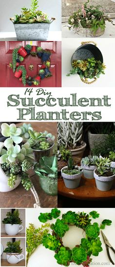 These 14 DIY succulent planters are the perfect way to dress up your home when you're not great at taking care of houseplants.