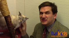 Kitty Kommercial! Animal shelter video that I had to share. It's hilarious.