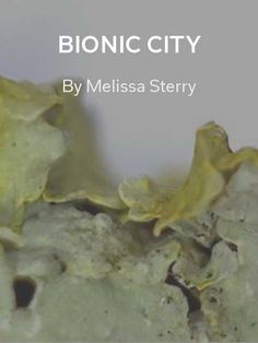 Bionic City by Melissa Sterry