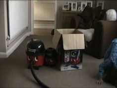 Arthur's first Henry Hoover video