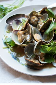 Shu Han Lee's gloriously simple clam dish is paired with an aromatic blend of ginger, red miso and coriander for a tasty and speedy Japanese recipe. Serve with plain white rice to soak up all of the wonderful cooking juices.