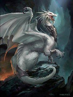 White Dragon Battle - Dragon Fantasy Myth Mythical Mystical Legend Dragons Wings Sword Sorcery Art Magic Drache dragon drago dragon Дракон  drak dragão