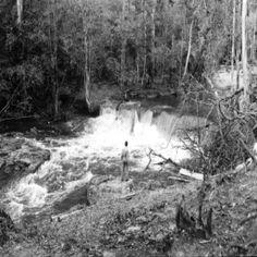 Cachoeira do Tarumã. Manaus. Acervo: IBGE.