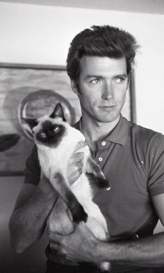 Larry Barbier Clint Eastwood with Cat Fine Art Print - Siamese Cat - Ideas of Siamese Cat - Clint Eastwood with his cat The post Larry Barbier Clint Eastwood with Cat Fine Art Print appeared first on Cat Gig. Clint Eastwood, Siamese Cats, Cats And Kittens, Cats Bus, Ragdoll Kittens, Tabby Cats, Funny Kittens, Bengal Cats, White Kittens