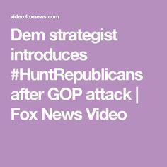 Dem strategist introduces #HuntRepublicans after GOP attack | Fox News Video