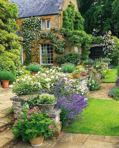 Saving Budget For Your Best DIY English Garden - English cottage garden, Cottage garden design, Flower garden design, Beautiful gardens, Patio garde - Garden Cottage, Diy Garden, Garden Care, Garden Ideas, Fence Ideas, Spring Garden, Green Life, Amazing Gardens, Beautiful Gardens