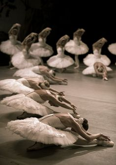 To dance is to reach for a word that doesn't exist, To sing the heartsong of a thousand generations, To feel the meaning of a moment in time. Ballet Pictures, Ballet Photos, Ballet Art, Ballet Dancers, Ballerinas, Day Of Dead, Paris Opera Ballet, Misty Copeland, Bolshoi Ballet