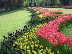Resultado de imagen para imagenes de primavera