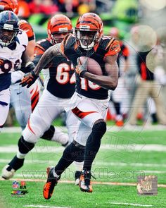 Cincinnati Bengals - A.J. Green Photo