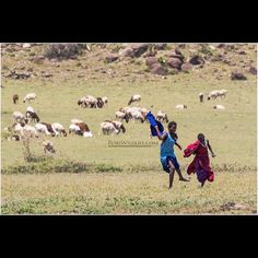 """""""Taking a Break""""  The Maasai Children work hard and all day long in the middle of no where tending to goats cattle... at about age 10 they can be found all by themselves no one for miles and miles armed with a staff and training that they have received from a very young age  These two seem to be playing a game of tag while the animals in the background graze  I had a wonderful trip to Africa and going though over 13000 images and videos.  I spent 10 days in Tanzania  visited Serengeti…"""