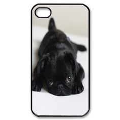 Cute Pug iPhone 4, 4s Case by phonecasewholesale, http://www.amazon.com/dp/B009HPSBYQ/ref=cm_sw_r_pi_dp_cRm6qb0QP1AWS