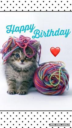 My Second Favorite Happy Birthday Meme Happy Birthday Animals, Happy Birthday Wishes Cards, Birthday Blessings, Birthday Wishes Quotes, Happy Birthday Pictures, Happy Birthday Sister, Happy Birthday Funny, Cat Birthday, Animal Birthday