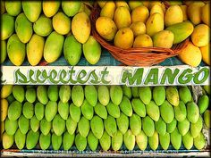 the best mangoes ever.