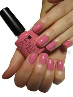 CND Shellac-Rose Bud - my first Shellac nails...