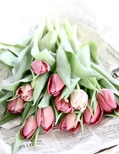 It was a package of pink tulips that came home with him today by Maria Emb, 2012 March via mariaemb.se