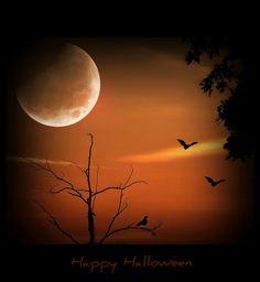 ༺♥༻ Halloween Moon ༺♥༻