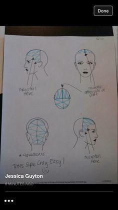 Blank Head Sheets! HEAD SHEETS in 2018 Pinterest