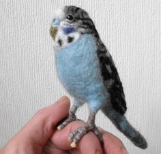 needle felted budgie | Flickr - Photo Sharing!