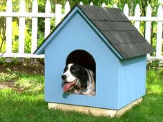How to Build a Simple Gabled-Roof Doghouse | how-tos | DIY
