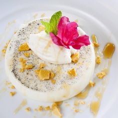 yogurt panna cotta yogurt panna cotta panna cotta perfect panna cotta ...
