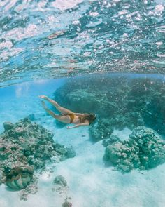Underwater shot snorkeling with fish in the turquoise water of One Foot Island, Aitutaki Cook Islands Resorts, Rarotonga Cook Islands, Fiji Islands, Beach Pink, White Sand Beach, Summer Beach, Summer Time, Destin Beach, Beach Trip