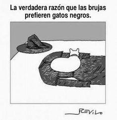 La razón que las brujas prefieren gatos negros - Confesiones y Realidades Blog for Spanish Teachers