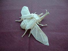 some amazing origami