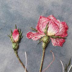 "Андреева Роза🌹 on Instagram: ""Пускай повисит с бутончиком:)#вышивкагладью #handmade #handmade #embroidery#coffe #роза#розы #декор #арт #coffe"" Crewel Embroidery Kits, Bead Embroidery Patterns, Ribbon Embroidery, Draps Design, Bargello Needlepoint, Embroidered Roses, Sewing Crafts, Needlework, Embroidery Stitches"