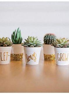Ideas succulent wedding favors gold for 2019 Succulent Wedding Favors, Gold Wedding Favors, Diy Wedding Gifts, Succulent Centerpieces, Succulent Wreath, Succulent Terrarium, Cactus Wedding, Succulent Care, Succulent Gardening