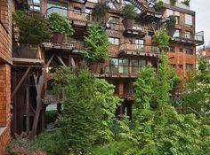 Edilizia sostenibile Urban Treehouse, la Casa-Foresta di Torino
