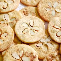 Sand dollar cookies for a nautical party theme...-a nautical themed party coming up--I'm throwing Val a nautical themed baby shower in Pensacola :)