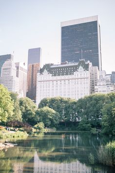 Picnic In Central Park | The Blondielocks | Life + Style