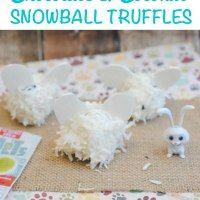 http://www.thismamaloves.com/chocolate-coconut-snowball-truffles/