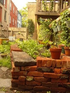 Salvaged bricks stacked dry, without mortar, make effective raised beds for lettuce and other greens.
