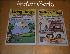 I've finally updated my living and nonliving mini-unit! This has been on my to-do list for quite some time. If you've already purchased thi...