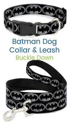 88853d365 28 Best Dog Collars   Leashes images