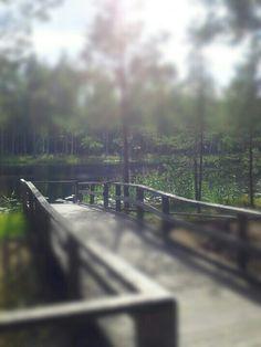 Seelammi @ Nastola, Finland.