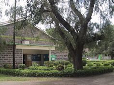 Greensteds International School, Nakuru