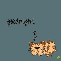 So, how would you feel is someone shared one of these good night images with you? Good Night Greetings, Good Night Messages, Good Night Wishes, Good Night Sweet Dreams, Good Night Quotes, Goodnight Cute, Goodnight Quotes For Him, Goodnight Texts, Good Night Moon