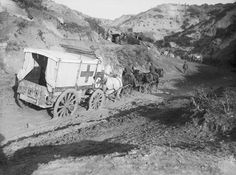 An ambulance wagon in Gully Ravine in November 1915 during the Gallipoli Campaign., Brooks Ernest (Lt)