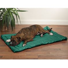 Slumber Pet WaterResistant Beds    Comfortable and Durable Nylon Beds for Dogs and Cats  XLarge Green -- Be sure to check out this awesome product.Note:It is affiliate link to Amazon.